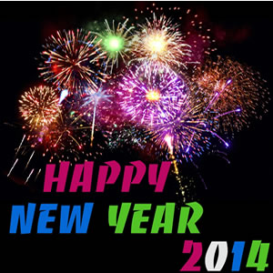 Domain Picks for New Years Day 2014 and a 2013 Thank You